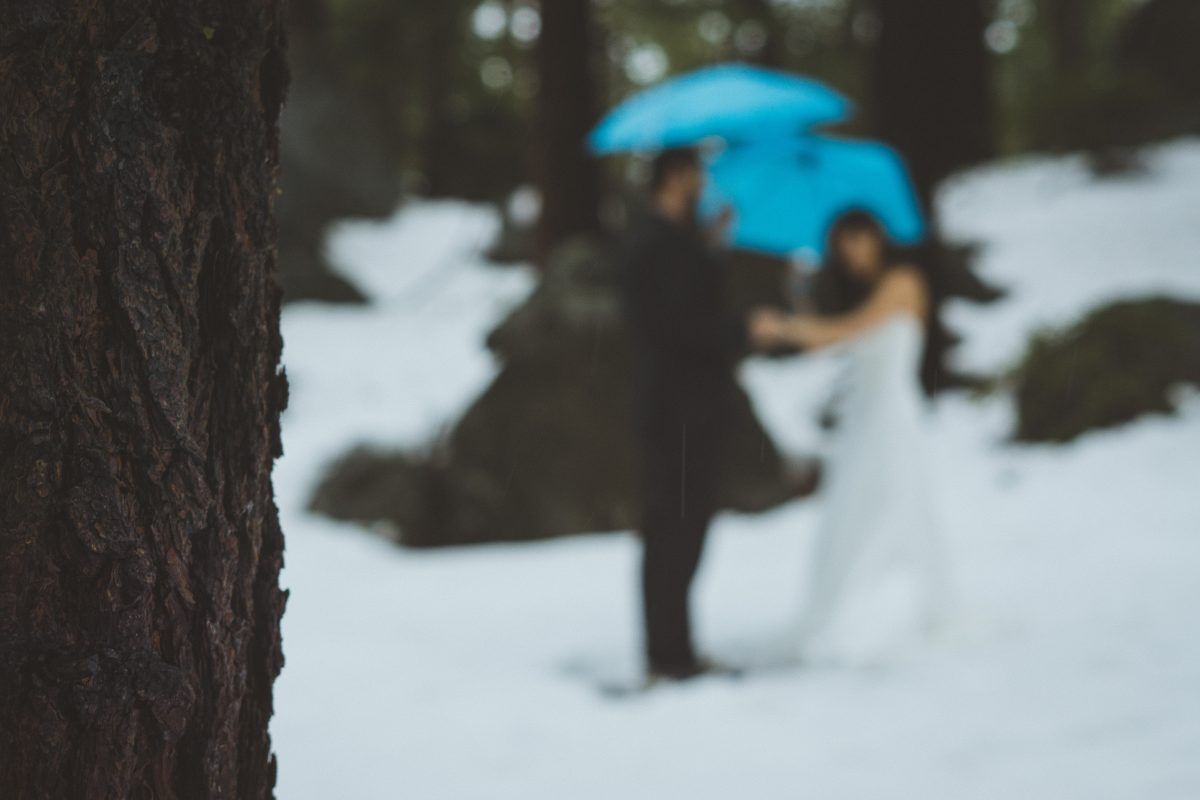 Artistic Elopement Photography in Lake Tahoe