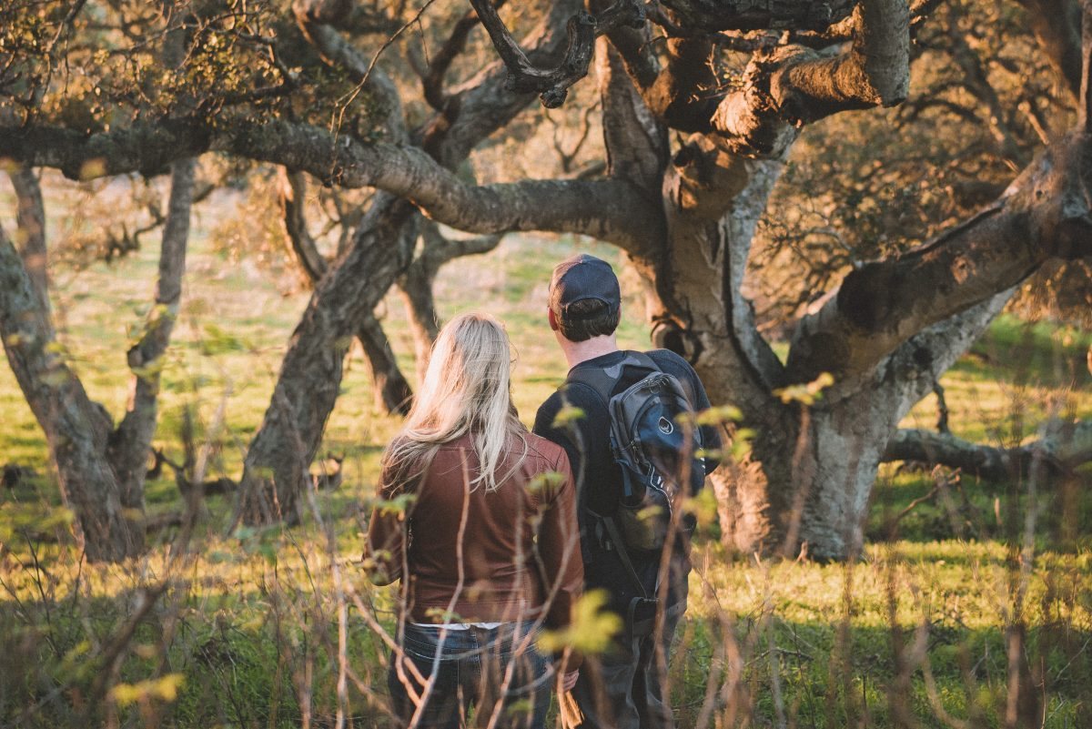 Candid photography on hike with deer