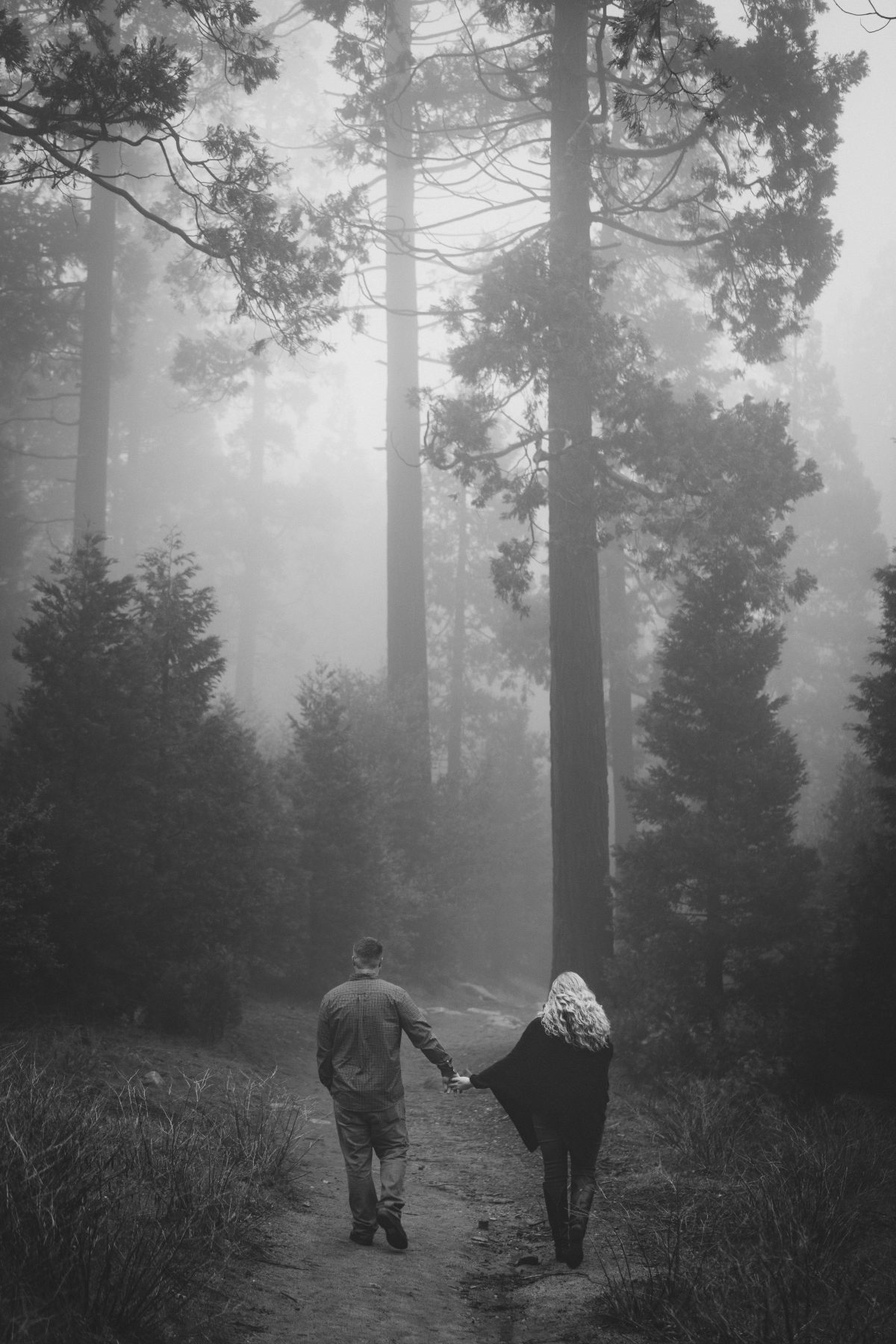 Engaged Couple Walking in the Foggy Forest