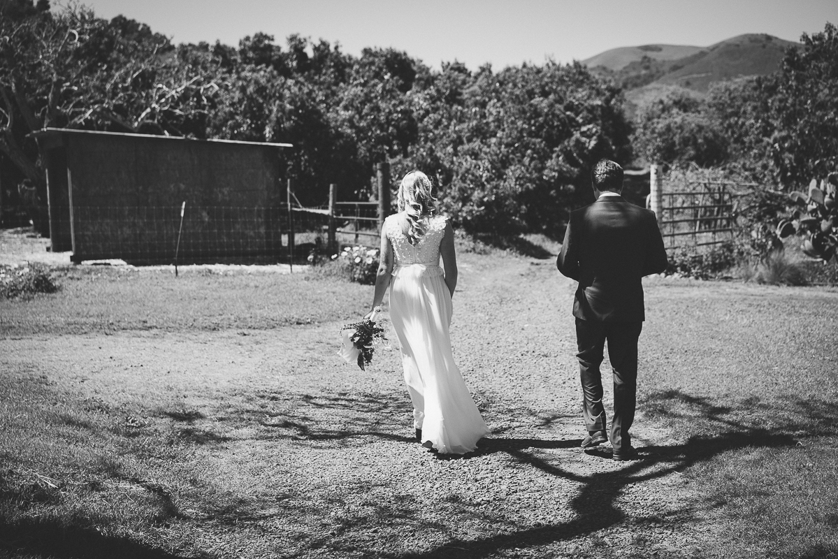Bride and groom walking in the field