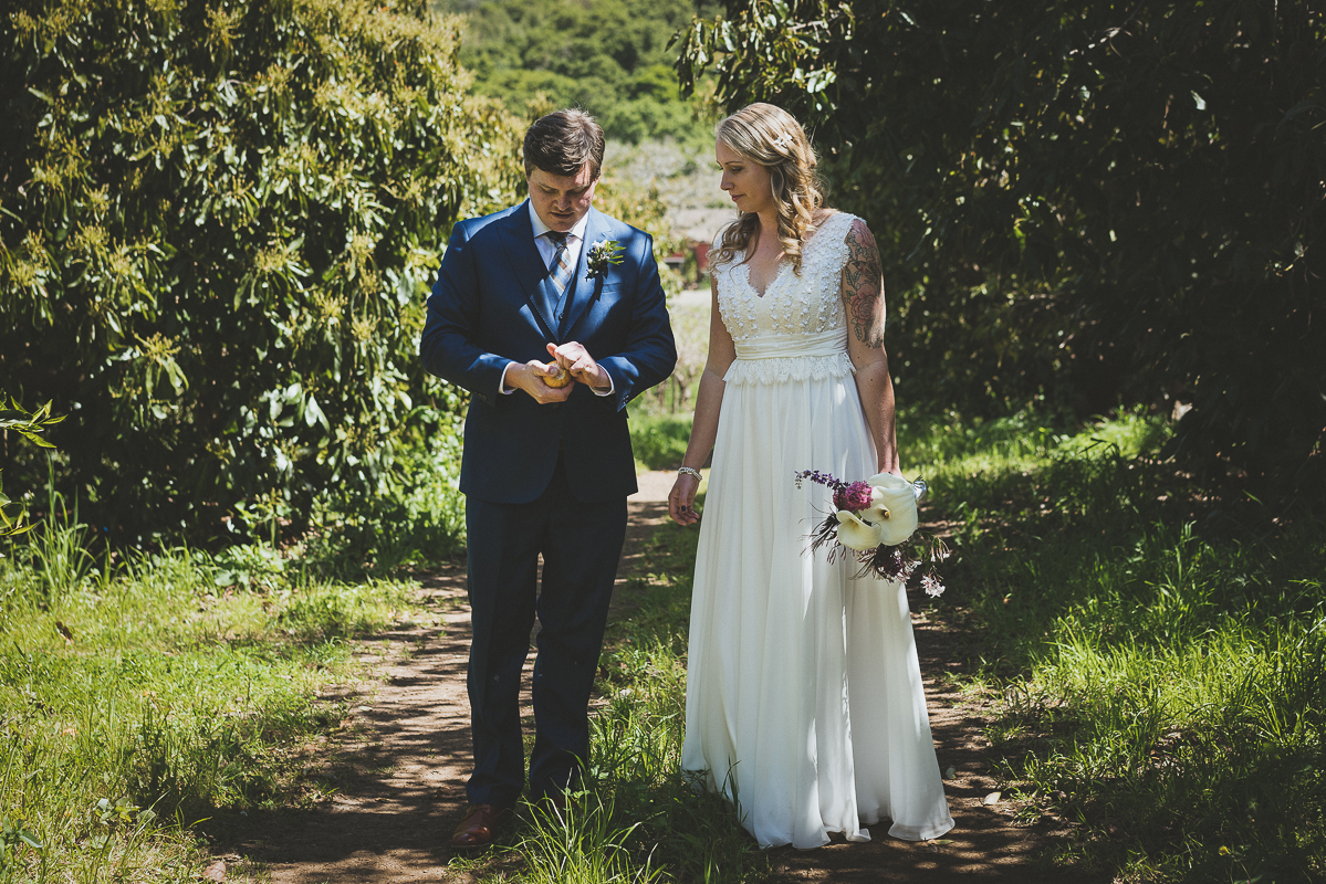 bride and groom find an orange tree