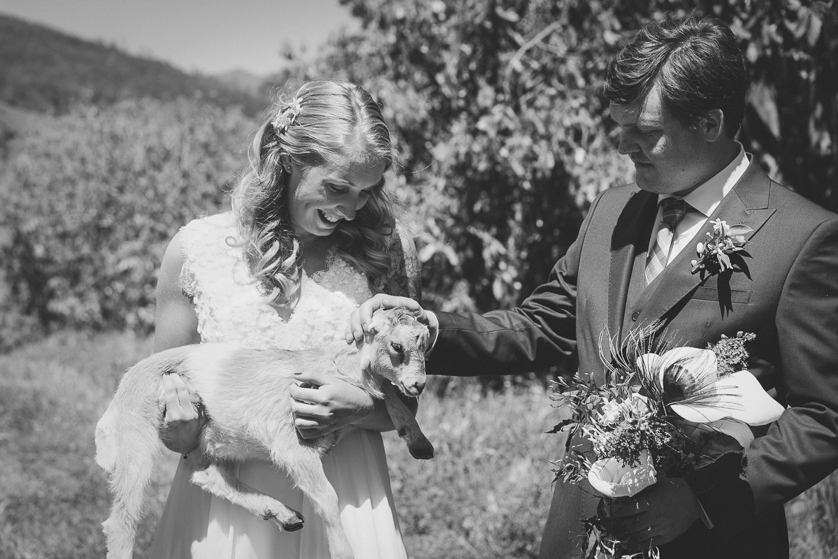 Future husband and wife find a goat