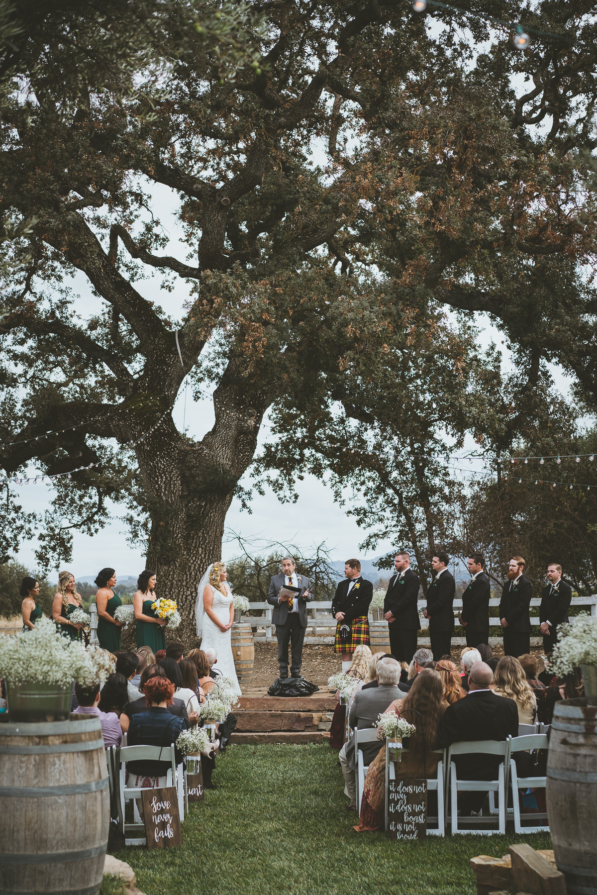 Wedding ceremony behind beautiful tree