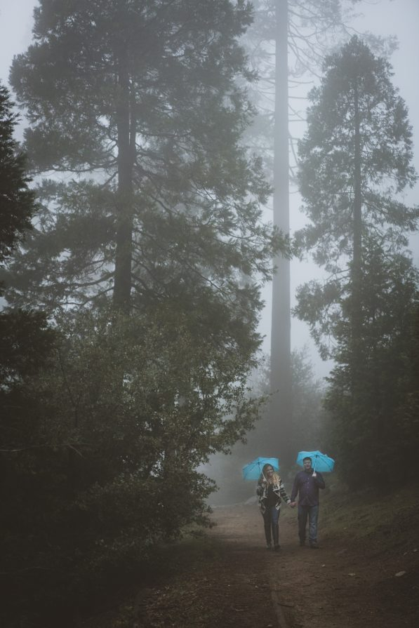 Couple Walking Together in the Forest