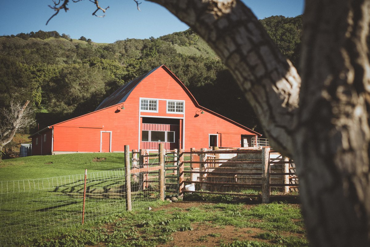 This Is Not The Outdoor Wedding Venue; This Is The Creamery