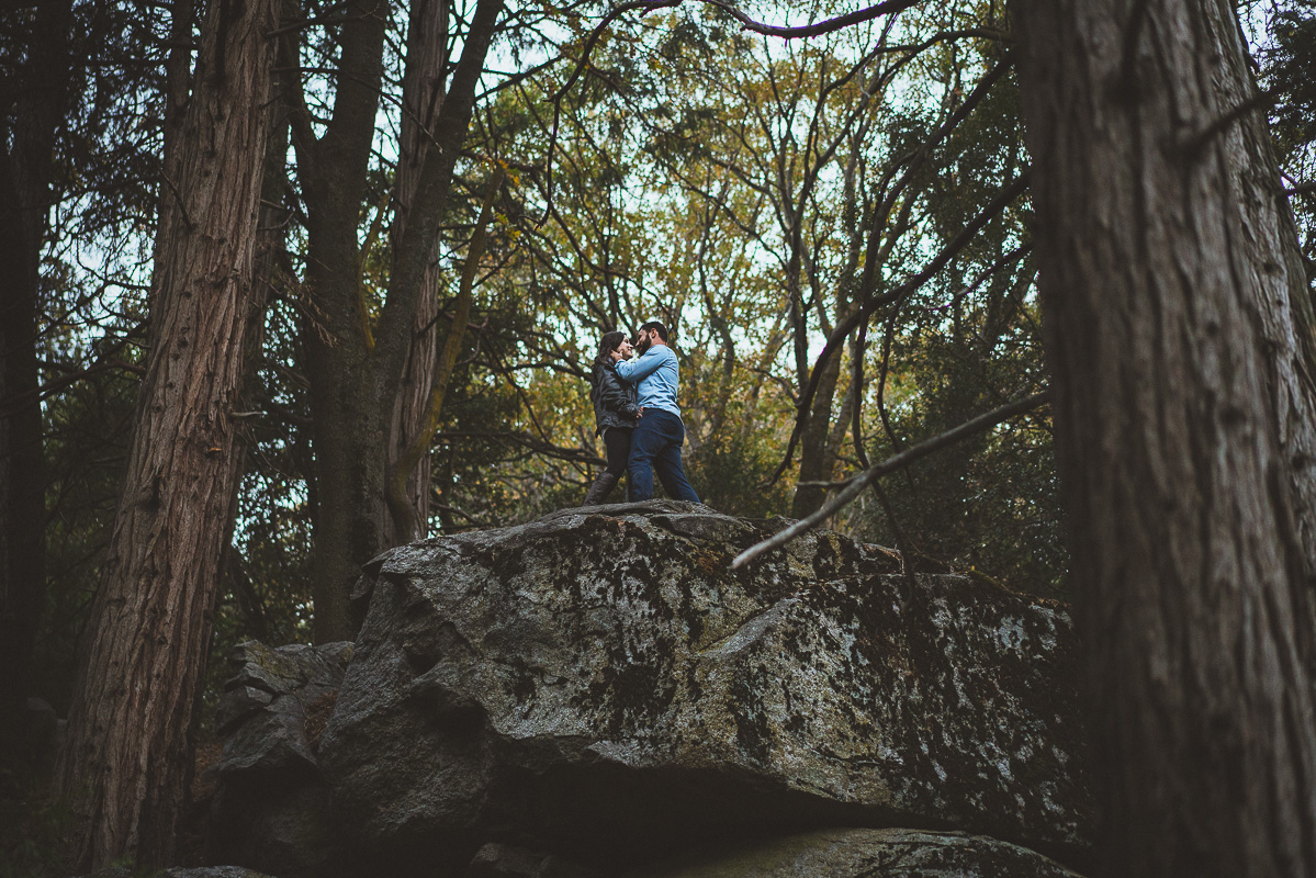 beautiful forest hiking couple