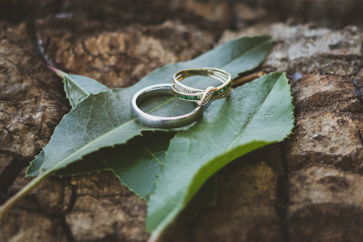 wedding rings placed in green leaves